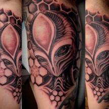 aliengray2