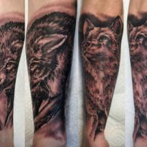 kylewolfs